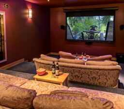 room, couches, screen, movie